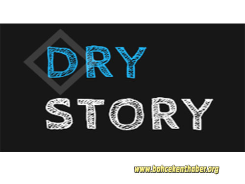 Dry Story Logo