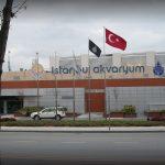 Bahçekent İstanbul Akvaryum Gezisi